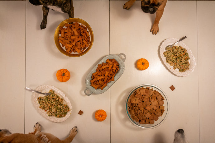 Thanksgiving Table Scraps That Dogs Shouldn't Eat