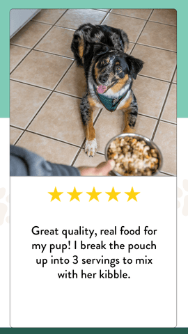 A five-star review for Portland Pet Food Company's healthy dog food toppers.