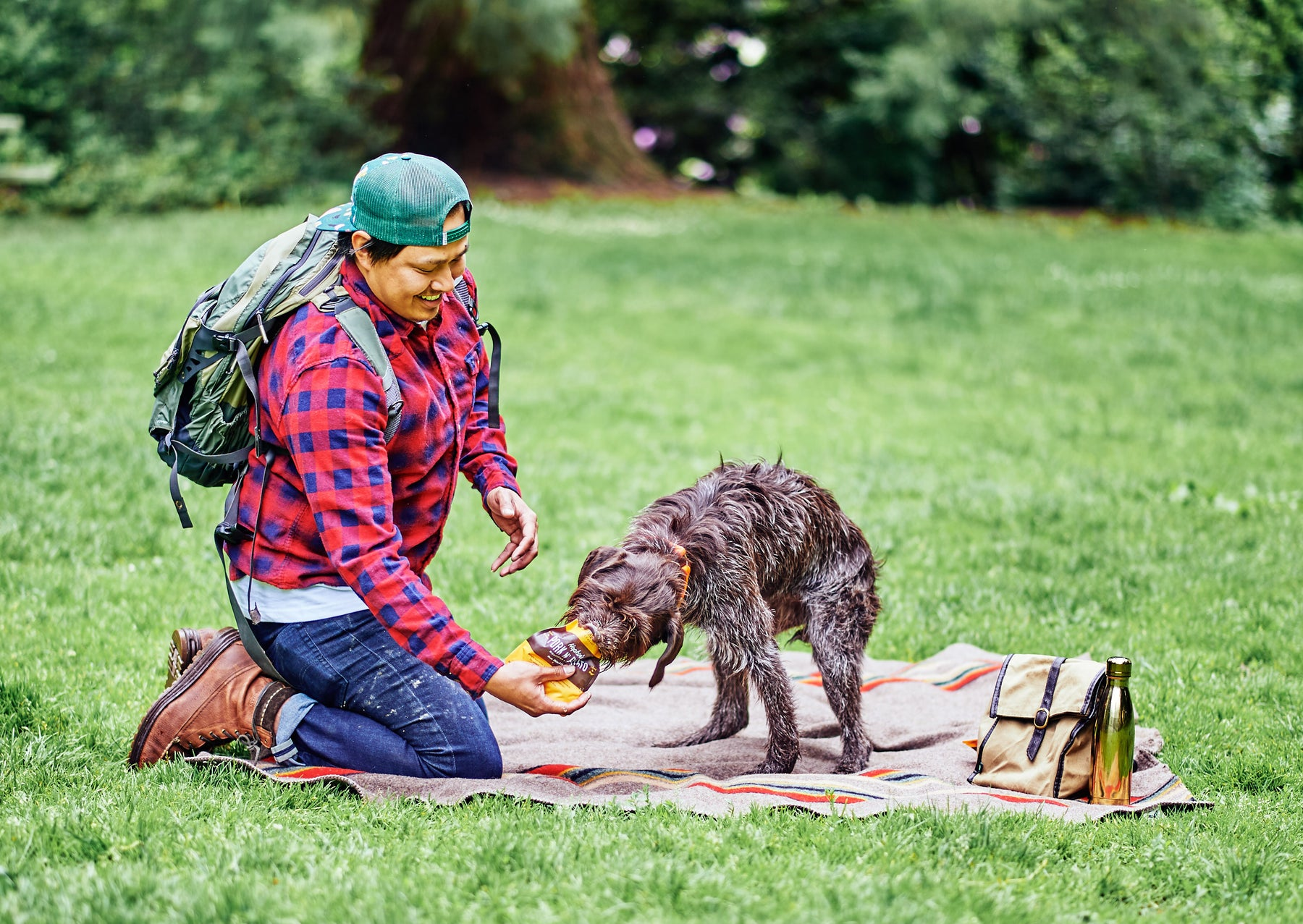 portland pet food company dog eating meal picnic