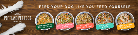 Dog food designed for picky eaters