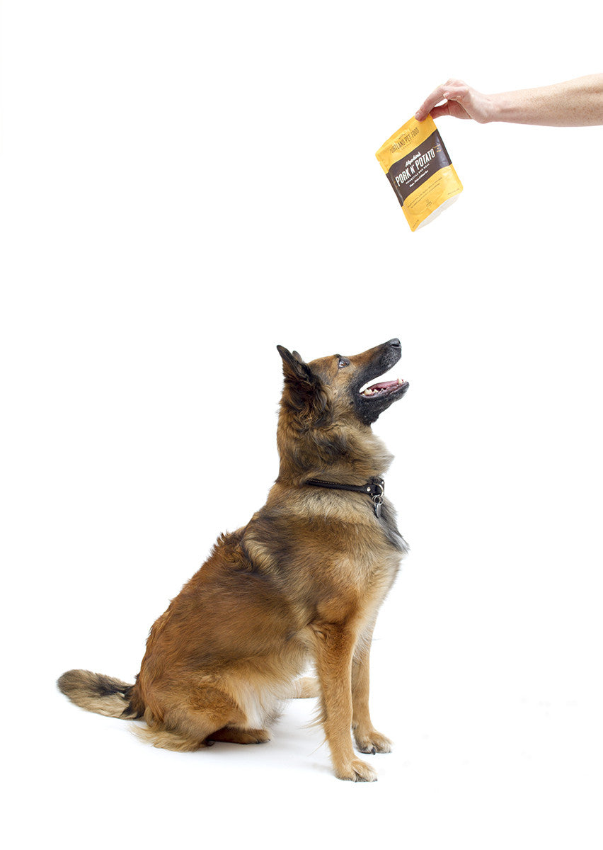 portland pet food company german shepherd dog meal