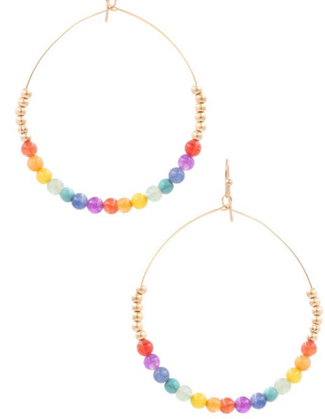 #1338 Rainbow Hoop Earrings