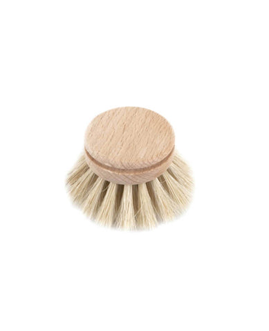 Dish Brush - Everyday Refill