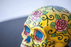 YELLOW ROSE LOTUS POD SKULL | MILLY + EUGENE | BackstreetShopper.com.au