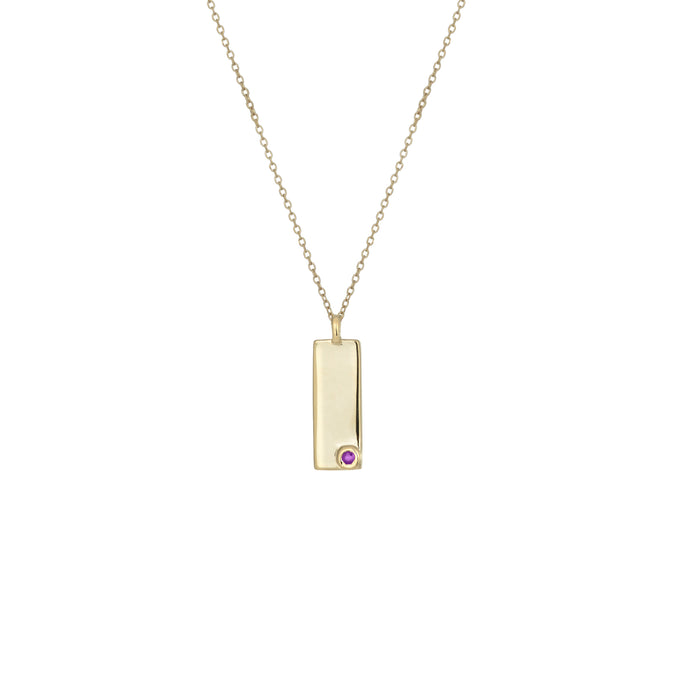 Birthstone Talisman Tag - February | Amethyst 14Y Gold Tag Necklace with Chain