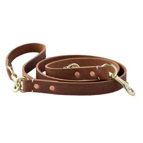 RAMBLER LEASH / TERRA