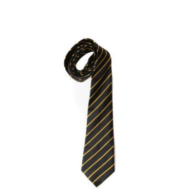 Three Rivers Academy Tie - Yellow House