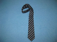 Thames Ditton Junior School Tie