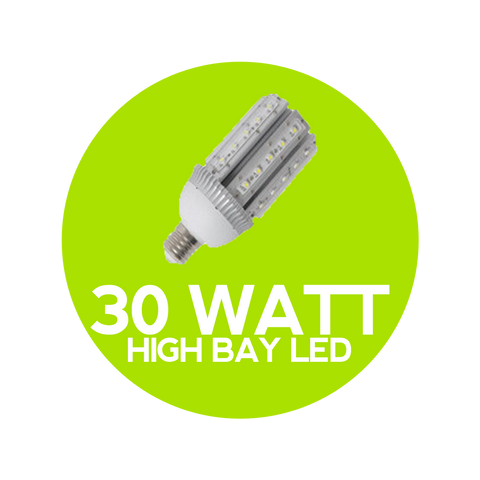 30 Watt LED High Bay Globe