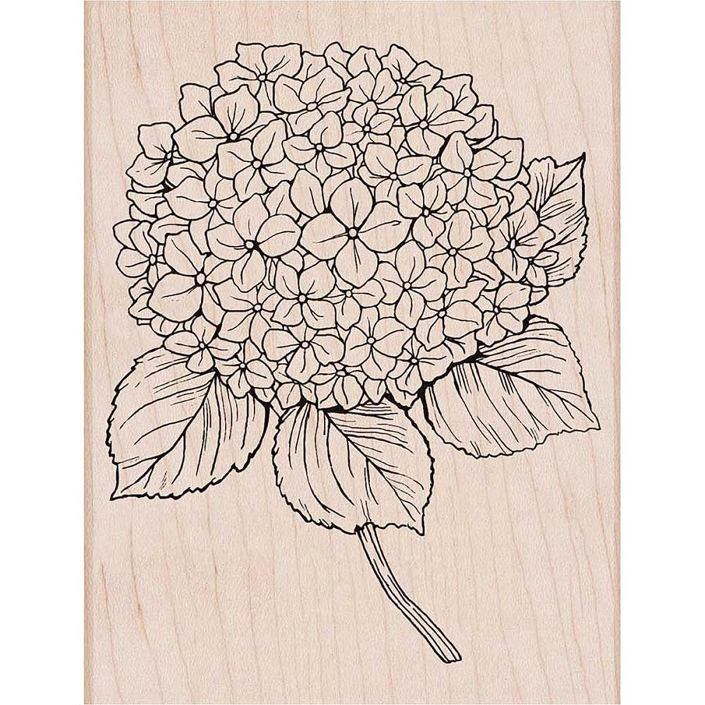 Hero Arts - Mounted Rubber Stamps - Large Hydrangea