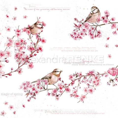 "Alexandra Renke Flowers Paper 12""X12"" - Birds In Cherry Blossoms International"