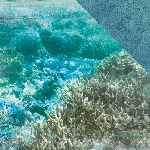 "(Pre Order) Kaisercraft - Deep Sea Double-Sided Cardstock 12""X12"" - Barrier Reef"