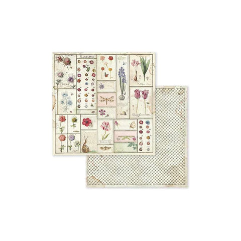 "(Pre Order) Stamperia - Double-Sided Cardstock 12""X12"" - Spring Botanic Herbarium"