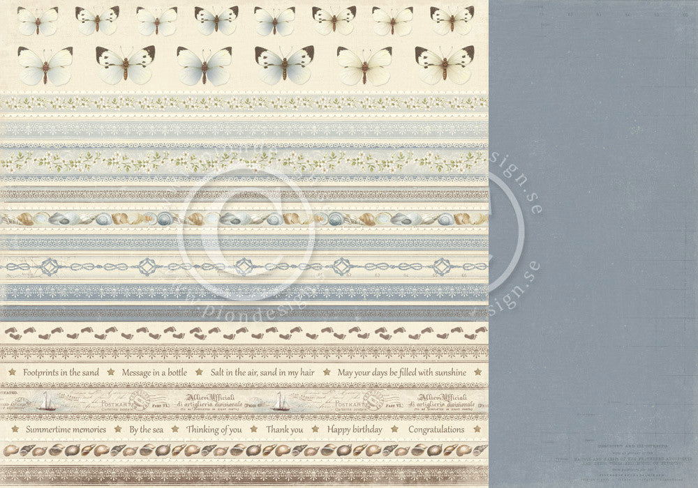 "Pion Designs Paper - Shoreline Treasures - 12"" x 12"" - Borders"