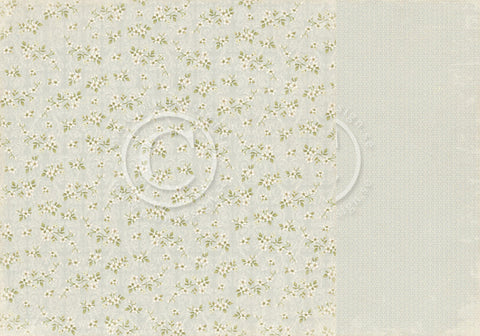"Pion Designs Paper - Shoreline Treasures - 12"" x 12"" - White Blossoms"