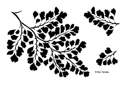 "Designs by Ryn Stencils 6"" x 9"" - Maidenhair Fern"