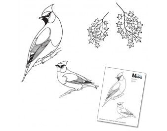 "Clarity Stamp -  Clear Stamp ""As Seen on TV"" - Remountable Finches and Sycamore Stamp Set + MASK (Unmounted)"