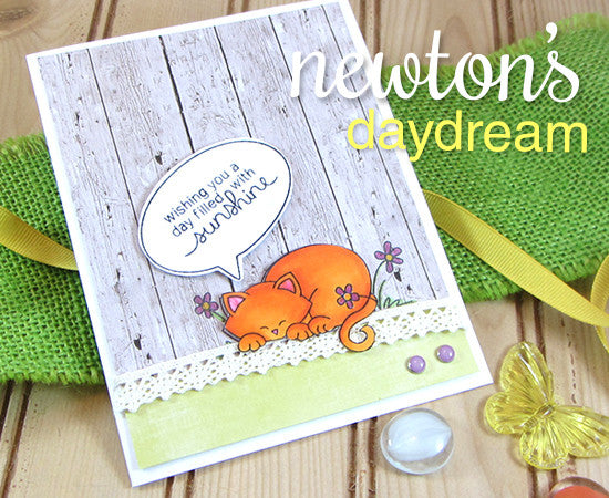 "Newton's Nook Designs - 3"" x 4"" Clear Stamps - Newton's Day Dream"