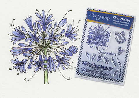 ***New Item*** Clarity Stamp - Unmounted A5 Stamp Set - Jayne Nestorenko Floral Collection - Agapanthus