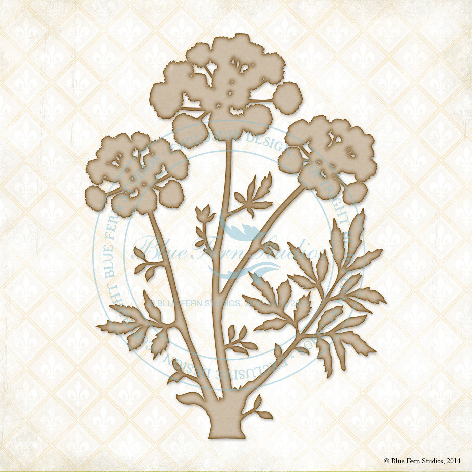 Blue Fern Studios - Meadow Angelica