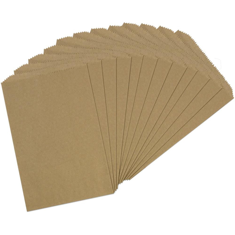 "Kraft X-Large Paper Bags from Canvas Corp 12 bags to Package 6 1/4"" x 9 1/4"" Mini Album"