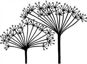 "Clarity Stamp -  Clear Stamp -  NDC Cow Parsley  1.77"" x 2.36""   (stamp size)"