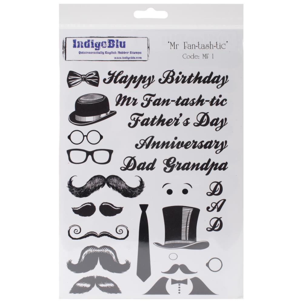 "IndigoBlu Cling Mounted Stamp 8""X5.5"" - Mr. Fan-Tash-Tic"