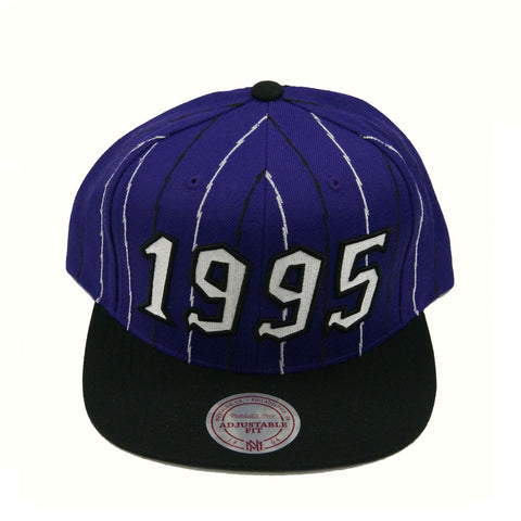 Toronto Raptors 1995 Expansion Snapback Hat