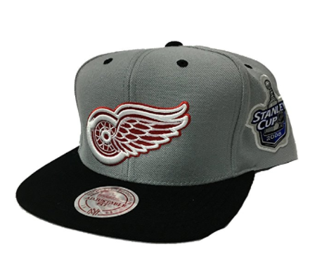 Mitchell & Ness Detriot Redwings Stanley Patch Snapback In Grey