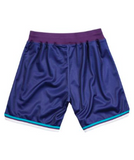 Mitchell & Ness 1994-95 Charlotte Hornets Alternate Authentic Shorts in Purple