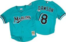 Mitchell & Ness Men's 1995 Andre Dawson #8 Mesh Batting Practice Jersey