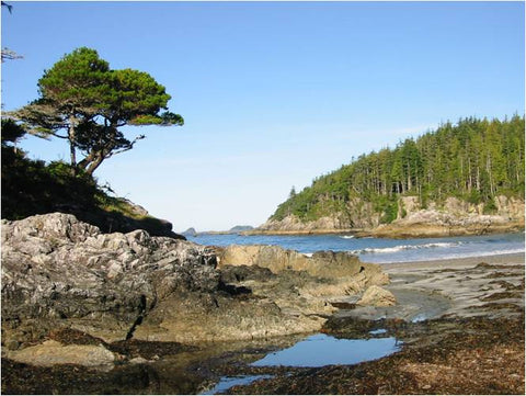 Guided Kayak Trip : 5 or 9 Days Nootka Island, British Columbia - Grand River Kayak Dunnville Ontario Canada