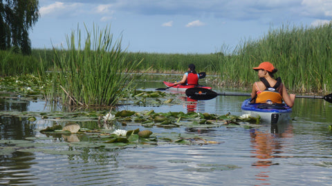 Guided Tour : Lower Grand River Marshes - Grand River Kayak Dunnville Ontario Canada