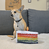 Doggijuana® - Get the Pawty Started Cake Slice - Refillable Dogginip® Toy