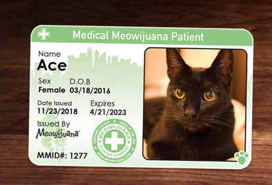 Medical Meowijuana ID