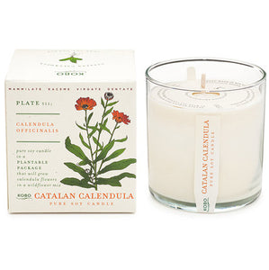 Kobo Candles Plant the Box - Catalan Calendula