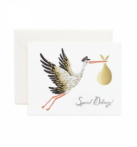 Baby Stork Greeting Card
