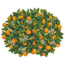 Oranges Placemat Die Cut-Single