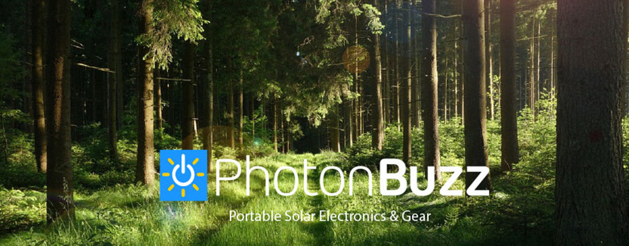 Photonbuzzs solar drizzle in the woods