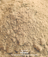 Henna Powder Ash Brown Surya Brasil 1.76oz - 6 Pack