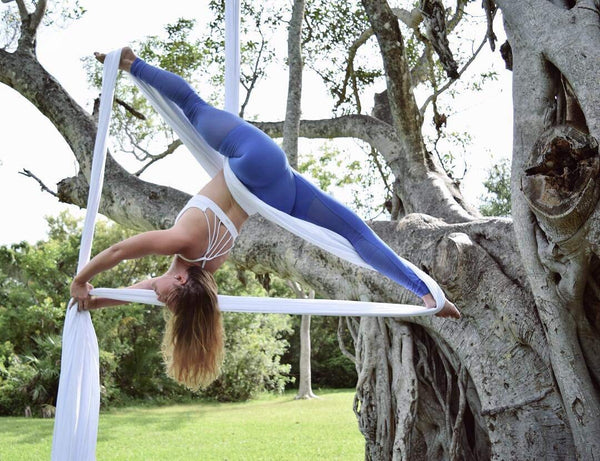 F.Life Aerial Silks Standard Kit Pilates Yoga Flying Swing