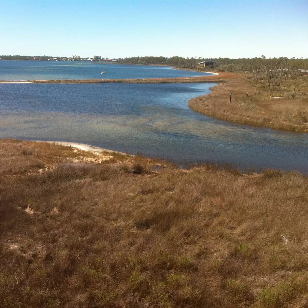 Big Lagoon State Park in Pensacola