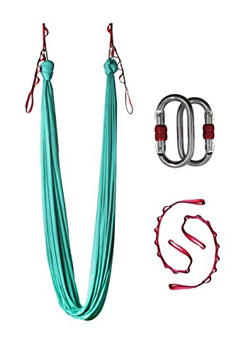 Dasking Deluxe 5m/set Yoga Swing Aerial Yoga Hammock kit with Daisy Chains Carabiners, Fabric & Guide (Fruit Green)