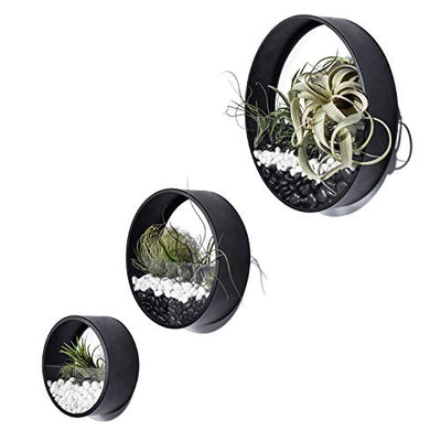 Ecosides Round Hanging Wall Vase Succulent Planter Vase- Metal Flower Pots, Indoor Decorative Air Plants Container Faux Plants, Cacti and More, Dark Black Color - in Gift Box Set of 3