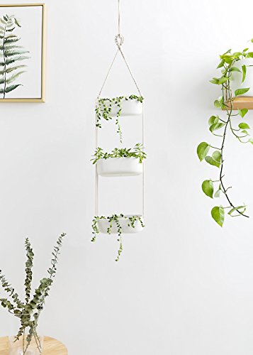 Mkono Ceramic Hanging Planter 3 Tier Indoor Wall Plant Holder for Succulent Herb Air Plant Live or Faux Plants Modern Vertical Garden, Rectangular