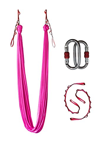 Dasking Deluxe 5m/set Yoga Swing Aerial Yoga Hammock kit with Daisy Chains Carabiners, Fabric & Guide (Pink)