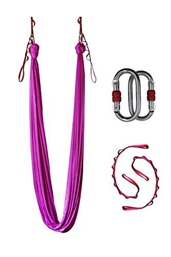 Dasking Deluxe 5m/set Yoga Swing Aerial Yoga Hammock kit with Daisy Chains Carabiners, Fabric & Guide (Violet)