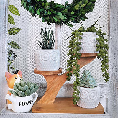 Owl Succulent Pots with 3 Tier Bamboo Saucers Stand Holder: 3pcs