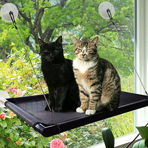 Superb Cat Window Perch Hammock Cat Bed Kitty Sunny Seat Durable Pet Perch With Upgraded Version 4 Big Suction Cups Cat Bed Holds Up To 60Lbs Andrewgaddart Wooden Chair Designs For Living Room Andrewgaddartcom