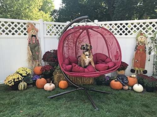 Flower House Hanging Pumpkin Loveseat Chair With Stand Red Hammock Town
